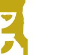 Platinum Games Λογότυπο